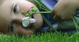 Entspannen auf dem satten Grün: Ein gepflegter Rasen gehört zum Gartenvergnügen einfach dazu. Foto: djd/DCM - Deutsche CUXIN Marketing GmbH