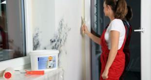 Schimmel im Zimmer sollte schnellstmöglich entfernt werden, am besten chemiefrei. Foto: djd/Tikkurila GmbH / PIGROL Farben