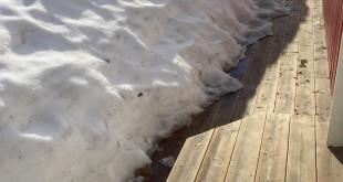 Im Winter sind Holzterrassen harten Bedingungen ausgesetzt: Lasten aus Schnee hinterlassen Schmutz und Risse. Dank des Bona Decking Systems ist davon nichts mehr zu sehen, wenn der Frühling Einzug hält. (Foto: epr/Bona)