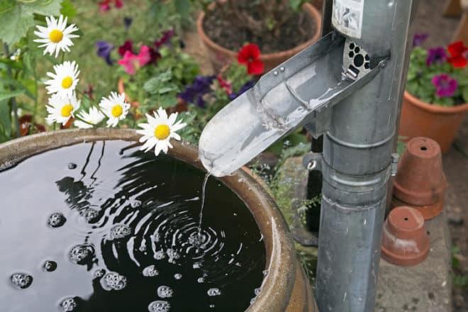 Eine Regentonne spart dem Gartenbesitzer nicht nur eine Menge Geld: Das Regenwasser ist zudem weniger hart als Wasser aus der Leitung, wovon auch die Pflanzen profitieren. Da im Sommer tagsüber große Wassermengen verdunsten, ist es ratsam, das Gießen in den frühen Morgenstunden oder am späten Abend zu erledigen. Bild: tdx/Fotolia