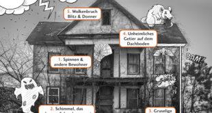 Diese Plagegeister ärgern Hausbesitzer nicht nur zu Halloween. (Grafik: Bausparkasse Schwäbisch Hall / jordanlieberman/Shutterstock.com)