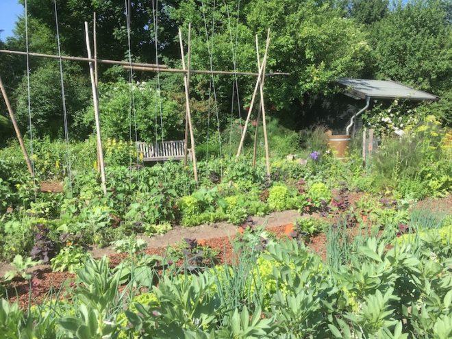 Eine richtige Garten Bewässerung ist gar nicht so schwer